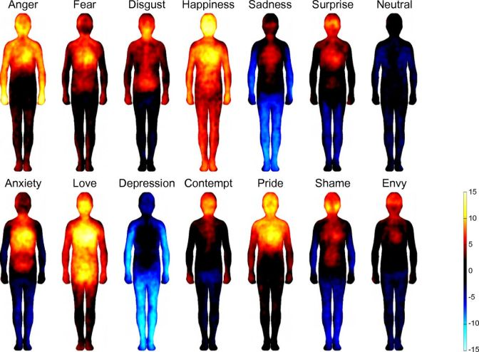[ Writing 101] Our body : The Map of Our Emotions