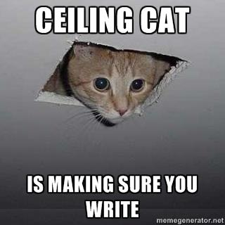 writingcat5